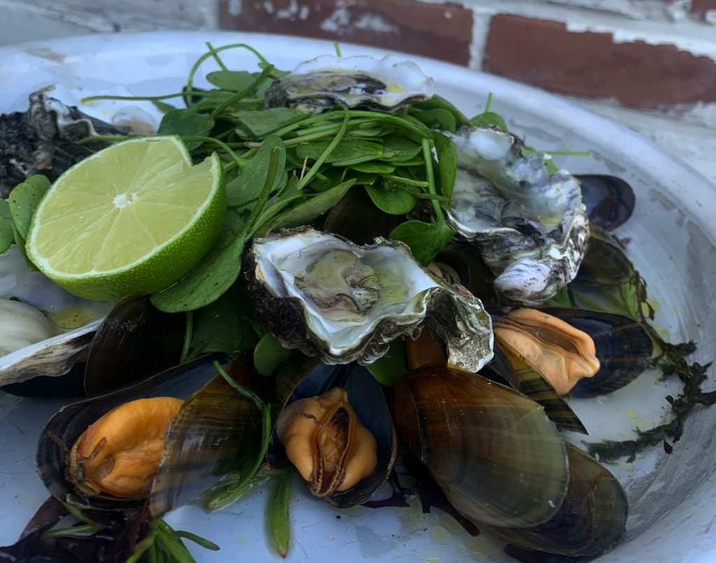 Salade uit de Zeeuwse natuur met chefkok Cas Zwemer 3